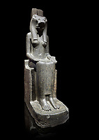 "Ancient Egyptian statue of goddess Sekhmet, grandodiorite, New Kingdom, 18th & 20thDynasty (1390-1150 BC), Thebes. Egyptian Museum, Turin. black background.<br /> <br /> Sekhmet, ""the Powerful One"" was a fearsome goddess symbolised by her lioness head. Daughter of the sun she personifies the disk of the world during the day. Sekhmet is the angry manifestation of Hathor inflicting the scourges of summer heat, famine and illness which is why the goddess needed to be exorcised every day. Drovetti Collection. C 249"