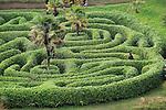 People exploring the Maze at Glendurgan Garden, Cornwall, England, UK