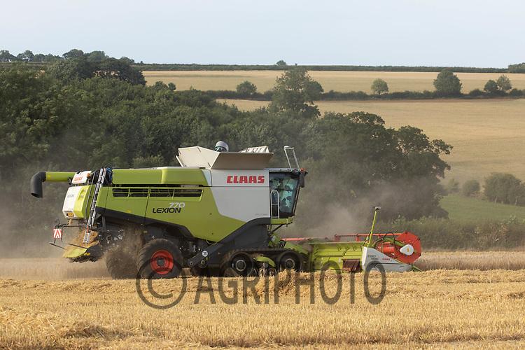22.7.2020 Harvesting Winter Barley in Rutland  ©Tim Scrivener Photographer 07850 303986<br />      ....Covering Agriculture In The UK.