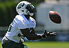 Romar Morris #30 of the New York Jets makes a catch during the second day of team training camp held at Atlantic Health Jets Training Center in Florham Park, NJ on Sunday, July 30, 2017.