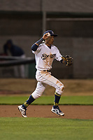 Helena Brewers shortstop Yeison Coca (2) chases a baserunner during a Pioneer League game against the Orem Owlz at Kindrick Legion Field on August 21, 2018 in Helena, Montana. The Orem Owlz defeated the Helena Brewers by a score of 6-0. (Zachary Lucy/Four Seam Images)