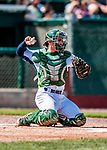 3 September 2018: Vermont Lake Monsters catcher Jose Rivas in action against the Tri-City ValleyCats at Centennial Field in Burlington, Vermont. The Lake Monsters defeated the ValleyCats 9-6 in the last regular game of the 2018 NY Penn League season. Mandatory Credit: Ed Wolfstein Photo *** RAW (NEF) Image File Available ***