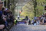 Fans wait eagerly for the 2nd ascent of the Kemmelberg during the 2019 Gent-Wevelgem in Flanders Fields running 252km from Deinze to Wevelgem, Belgium. 31st March 2019.<br /> Picture: Eoin Clarke | Cyclefile<br /> <br /> All photos usage must carry mandatory copyright credit (© Cyclefile | Eoin Clarke)