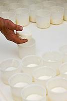 Europe/France/Rhône-Alpes/26/Drôme/Dieulefit: Patrick Vinaski producteur de picodons  moule ses fromages