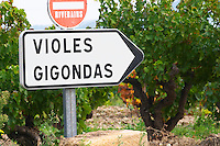 Road sign in front of the vineyards saying Gigondas and Violes.