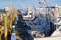 Charter fishing boats docked in Rock Harbor, Orleans, Cape Cod, Massachusetts, USA