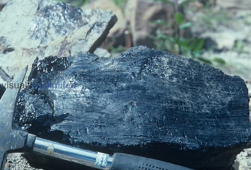 Chunk of Bituminous Coal.