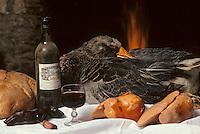 Europe/France/Midi-Pyrénées/46/Lot/Haut-Quercy/Env Salviac: Foie gras et verre de vin