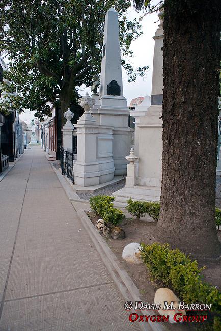 Wild Cats, La Recoleta Cemetery