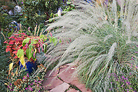 A single blooming ornamental grass can be a spectacular focalpoint inthe fall as in this September vignette from Dan Johnson's Denver garden.