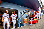 26 February 2019: Washington Nationals Manager Dave Martinez (4) and first base coach Tim Bogar enter the dugout from the clubhouse tunnel prior to a Spring Training game against the St. Louis Cardinals at the Ballpark of the Palm Beaches in West Palm Beach, Florida. The Nationals fell to the visiting Cardinals 6-1 in Grapefruit League play. Mandatory Credit: Ed Wolfstein Photo *** RAW (NEF) Image File Available ***