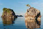 Misool, Raja Ampat, Indonesia; Boo area, two rocks with trees reflecting in the water in late afternoon sunlight