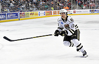 HERSHEY, PA - DECEMBER 01: Hershey Bears center Mike Sgarbossa (17) back checks during the Springfield Thunderbirds at Hershey Bears on December 1, 2018 at the Giant Center in Hershey, PA. (Photo by Randy Litzinger/Icon Sportswire)