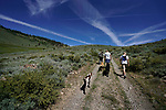 Images from a hike into Bagley Valley, near Markleeville, Ca., on Saturday, June 29, 2019.<br /> Photo by Cathleen Allison/Nevada Momentum