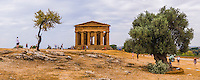 Agrigento, Panoramic photo of tourists at Valley of the Temples (Valle dei Templi), Temple of Concordia and the old olive tree, Sicily, Italy, Europe. This is a panoramic photo of tourists at The Temple of Concordia and the old olive tree at The Valley of the Temples (Valle dei Templi) in Agrigento. The Valley of the Temples (Valle dei Templi), and thus Temple of Concordia (Tempio della Concordia) are one of a number of UNESCO World Heritage Sites in Sicily, Italy.