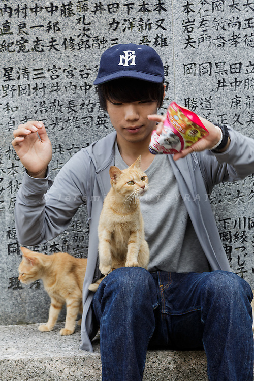 Aoshima, Ehime prefecture, September 4 2015 - Cat lovers interacting with cats at Aoshima island.<br /> Aoshima (Ao island) is one of the several &laquo; cat islands &raquo; in Japan. Due to the decreasing of its poluation, the island now host about 6 times more cats than residents.