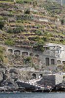 Una veduta di Manarola, uno dei borghi delle Cinque Terre, sormontata dai vigneti.<br /> Vineyards are seen past the village of Manarola at the Cinque Terre.<br /> UPDATE IMAGES PRESS/Riccardo De Luca