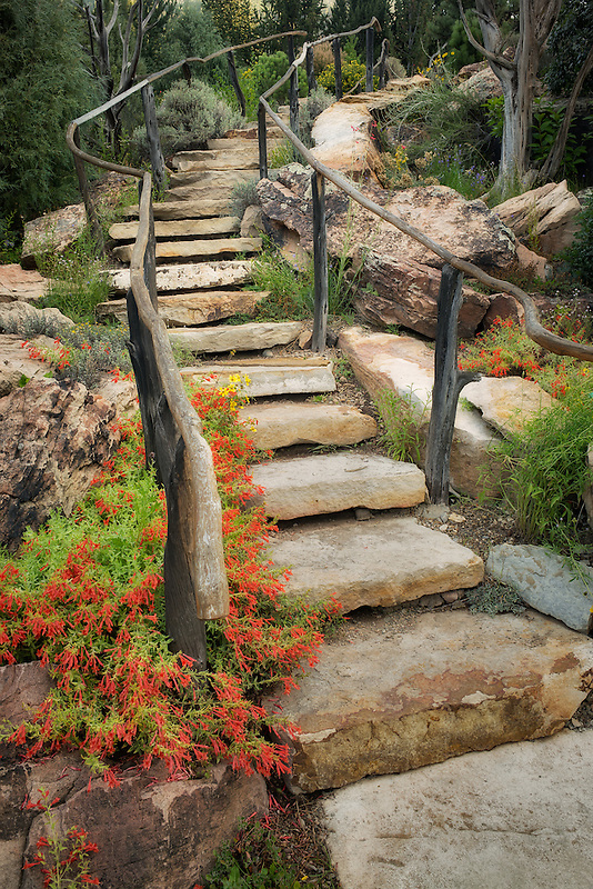 Stone steps with red Beard-tongue penstemon. Betty Ford Alpine Gardens. Vail, Colorado