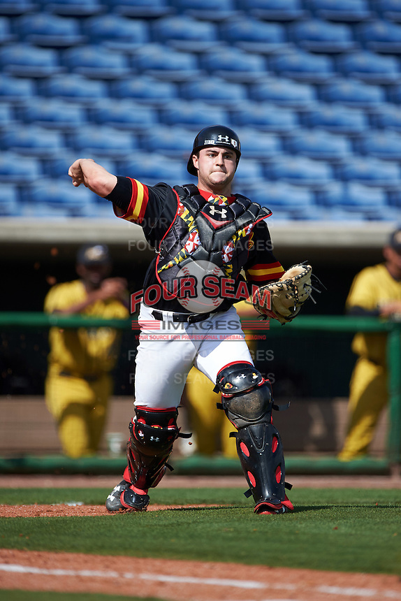 Maryland Terrapins catcher Dan Maynard (11) throws to first base during a game against the Alabama State Hornets on February 19, 2017 at Spectrum Field in Clearwater, Florida.  Maryland defeated Alabama State 9-7.  (Mike Janes/Four Seam Images)