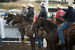 Horses during the Cody Stampede event in Cody, WY - 7.1.2019 Photo by Christopher Thompson