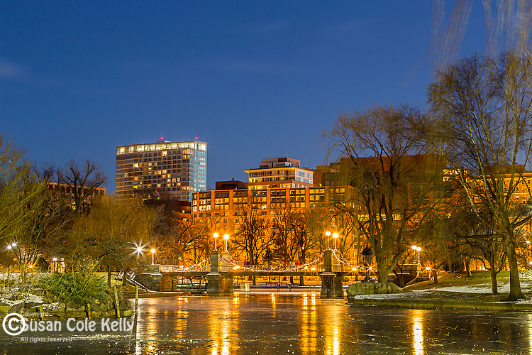 Winter lights in the Boston Public Garden, Boston, Massachusetts, USA