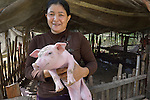 Ann Sout holds a pig in the village of Dong in northern Cambodia. Life With Dignity, a member of the ACT Alliance, is working with people in this village to increase their agricultural production and thus increase food security. Ann Sout has raised piglets with help from Life With Dignity.