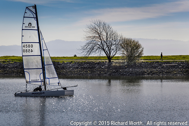 A sailor on a catamaran glides around the small boat lagoon at the San Leandro Marina  Park while, in the background, walkers take advantage of the par course on a warm, late February afternoon.