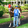 Madgicall at Delaware Park on 7/5/17