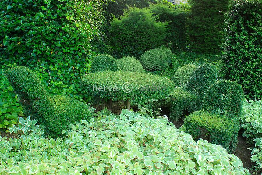 Jardins du pays d'Auge (mention obligatoire dans la légende ou le crédit photo):.mobilier végétal (en Lonicera ?)