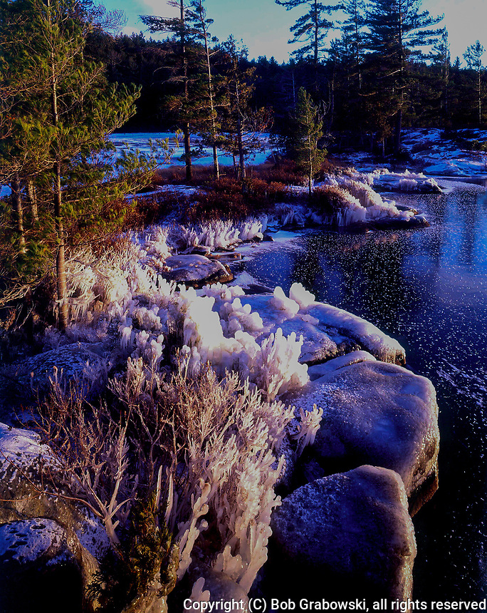A coating of ice at Wintergreen Point on Pharoah Lake in the Adirondack Mountains of New York state