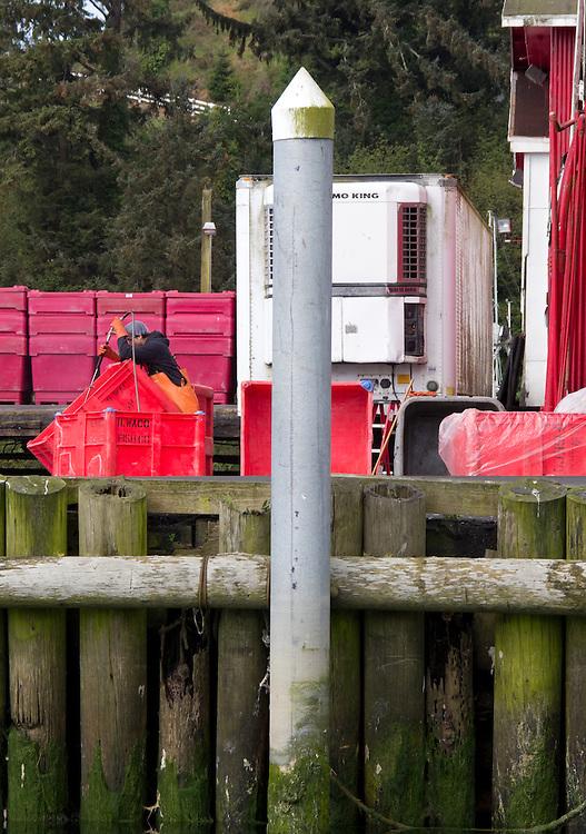 Washington Coast, Ilwaco, Jessie's Ilwaco Fish Company, fish processors, Port of Westport, Grays Harbor County, Southwest Washington, Washington State, Pacific Northwest, USA,