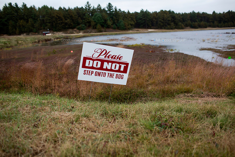 A sign asks people not to step in the cranberry bog during the AD Makepeace Company's 10th Annual Cranberry Harvest Celebration in Wareham, Massachusetts, USA. AD Makepeace is the world's largest producer of cranberries. These cranberries, wet harvested with varied colors, are destined for processing into juice, flavoring, canned goods and other processed foods.