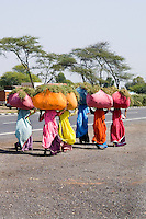 Colorful women in sari costumes carrying heavy loads on head  on road to Jodhpur in Rajasthan India