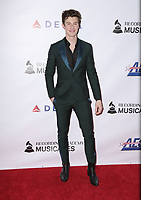 08 February 2019 - Los Angeles California - Shawn Mendes. MusiCares Person Of The Year Honoring Dolly Parton held at Los Angeles Convention Center. Photo Credit: PMA/AdMedia
