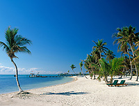 USA, Florida Keys, Islamorada: Beach at Moorings | USA, Florida Keys, Islamorada: Beach at Moorings
