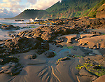 Lane County, OR<br /> Evening light on sand and rock beach under the headlands of the central Oregon coast