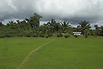 The Marowijne River, Suriname.  Mowed path cutting through a large private property in the village of Nason.
