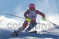 2015 Section 5 Alpine Ski Meet AM Run
