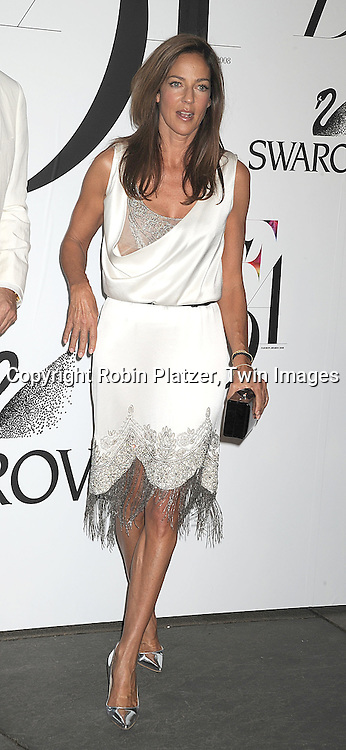 Kelly Klein.posing for photographers at The 2008 CFDA Fashion Awards on June 2, 2008 at The New York Public Library in .New York City. ..Robin Platzer, Twin Images