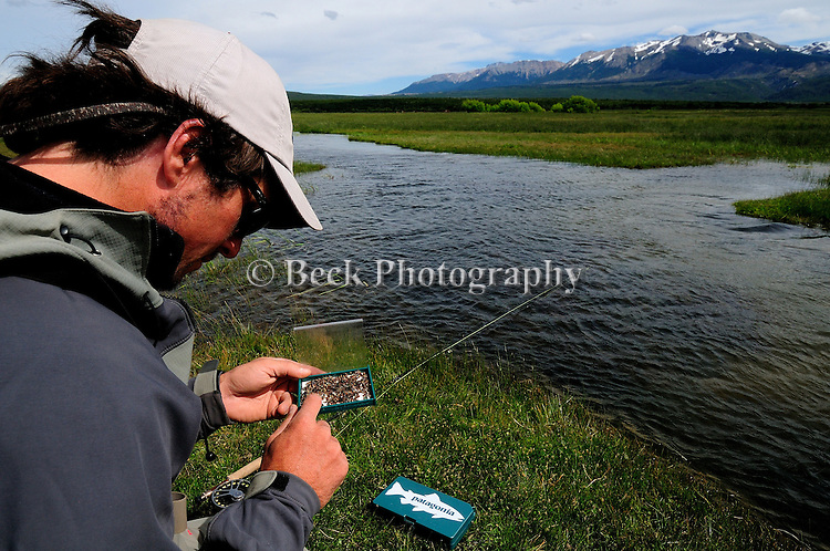 Fly Fishing Spring Creek Patagonia