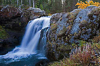 Moose Falls, Crayfish creek, one mile north of the South Entrance, Yellowstone National Park.  These falls plunge 30 feet as Crayfish Creek makes its way to the Lewis River and on into the Snake River. <br />