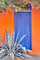 House door with aloe plant. Tucson. Arizona