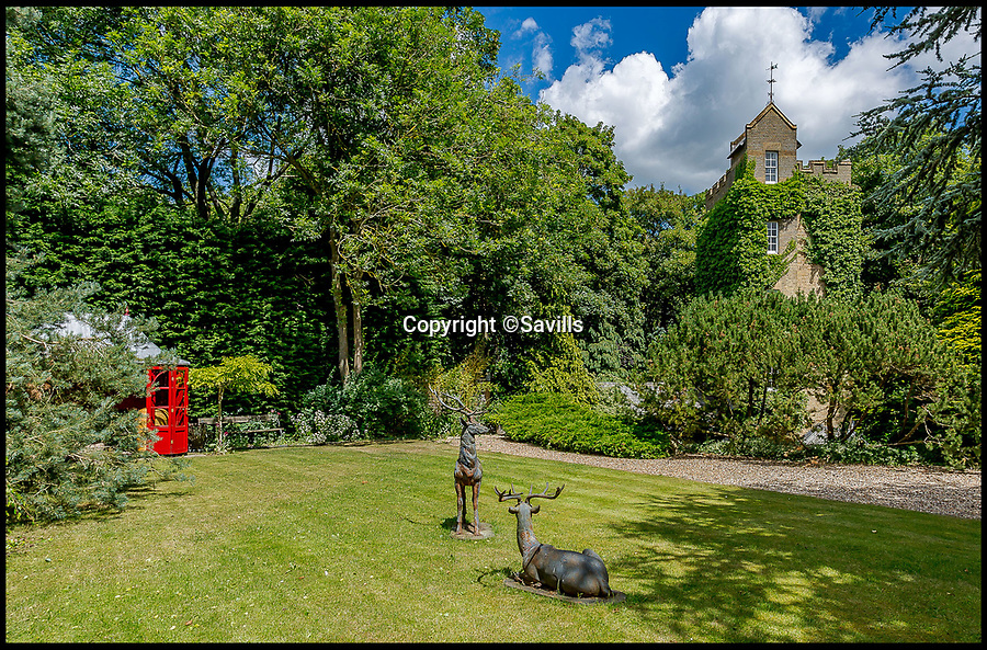 BNPS.co.uk (01202 558833)<br /> Pic: Savills/BNPS<br /> <br /> A striking ivy-covered former water tower that has been converted into a quirky home - now on the market for £1.5m - is the perfect property for any budding Rapunzel.<br /> <br /> The fairytale-style property is about 60ft high and has commanding 360-degree views over its own grounds and beyond to the surrounding paddocks and farmland.<br /> <br /> The five-storey Victorian home even has a castellated roof terrace, perfect for enjoying the sylvan setting in the picturesque village of Benington, Herts.<br /> <br /> The water tower was built in 1890 to supply water to the private Benington estate, but was eventually left derelict by the 1950s and was converted in the 1970s by previous owners.