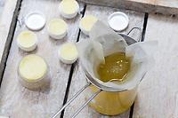 3. Schritt Lippen-und-Pfoten-Salbe selbermachen, selber machen, selber rühren: im Olivenöl verflüssigtes Harz und Bienenwachs werden durch ein feines Teesieb gesiebt. Lippen-und-Pfoten-Balsam, Lippensalbe, Lippenbalsam, Pfotensalbe, Pfotenbalsam, Pfötchen-Salbe, Lippenpflege, Harzsalbe, Harzcreme, Harzbalsam, Pechsalbe, Fichtenharz wird zusammen mit Olivenöl, Honig und Bienenwachs zu einer Heilsalbe, Heilcreme, Creme, Salbe verarbeitet, Harzbalsam. Gewöhnliche Fichte, Rot-Fichte, Rotfichte, Picea abies, Common Spruce, Norway spruce, L'Épicéa, Épicéa commun