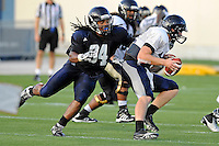 12 August 2011:  FIU's James Jones (94) sacks Jake Medlock (12) during a scrimmage held as part of the FIU 2011 Panther Preview at University Park Stadium in Miami, Florida.