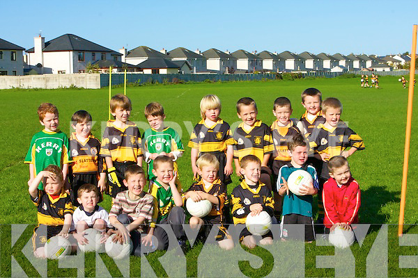 UNDER 6: The under 6s Austin Stack players who played in the Bracker O'Regan Competition on Sunday morning up in Caherslee...   Copyright Kerry's Eye 2008