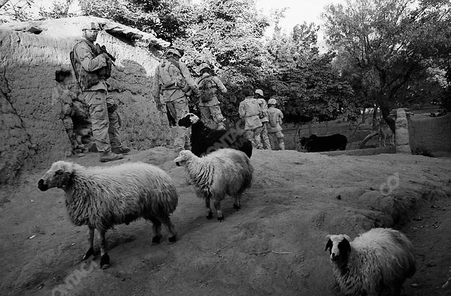 1st Battalion, 508th Infantry Regiment of the 173rd Airborne Brigade search for Taliban invillage near Gonbaz, Shawali-Kot, Kandahar Province. October 2005.