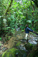 Young woman crossing stream in jungle while birdwatching, Parque Internacional La Amistad, Panama