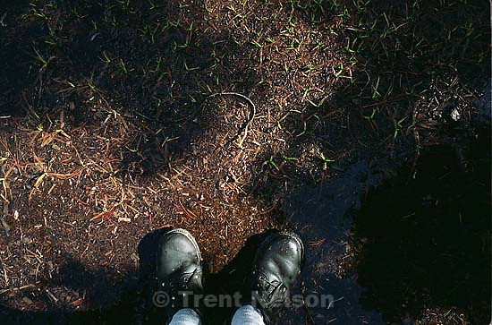 Trent feet and spring growth on solo hike to Sword Lake<br />
