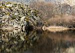 Parque Natural Lago de Sanábria..24 de Março de 2007